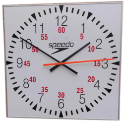 Speedo Pace & Time of Day Clock